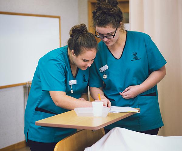 Nursing Programs, Chatham University, Pittsburgh, PA