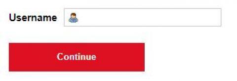 Text reset button